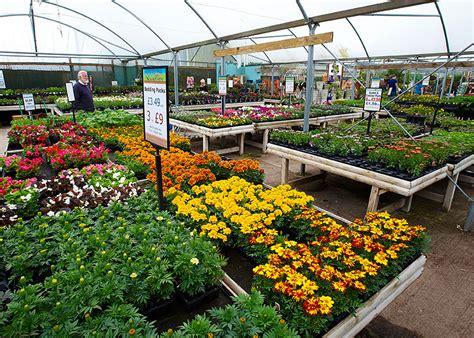 garden centre lyonshall nurseries  garden centre