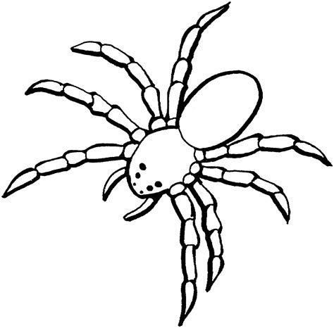 Spider Coloring Page free printable spider coloring pages for