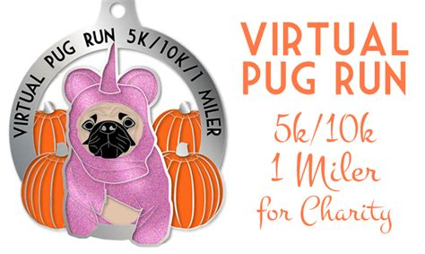pug rescue chicago the pug run 5k 10k 1 miler frugal beautiful