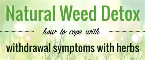 How Soon To Detox Mairjuana by Marijuana Withdrawal Symptoms Managing Nausea And Loss Of