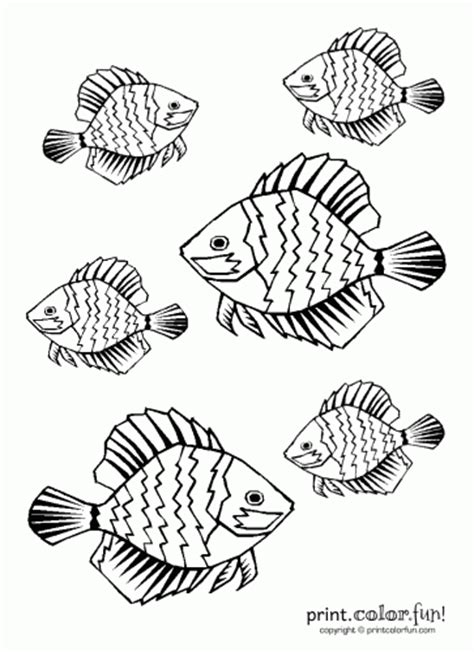 tropical fish coloring pages printable complex 20design colouring pages