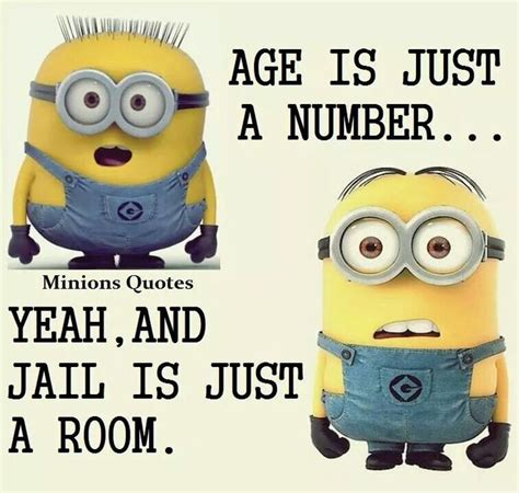 Minions Birthday Meme - 264 best images about funny quotes on pinterest funny