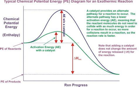 exothermic energy diagram potential energy diagram exothermic reactions organic