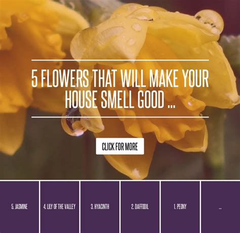 5 flowers that will make your house smell gardening