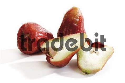 apple themes java red java apples download abstract
