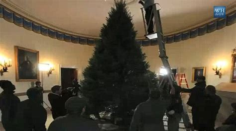 obama s christmas tree takes 4 days to put up at height of