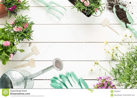 spring gardening tools and flowers in pots on white wood