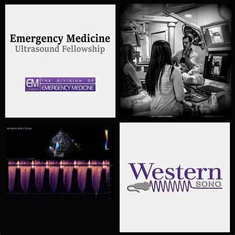 Emergency Medicine Mba Fellowship by 2014 Critical Care Ultrasound Course Open For