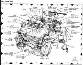 wiring harness 2004 suzuki verona wiring get free image about wiring diagram
