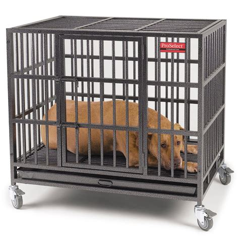 cage for dogs small crate small kennels travel crate breeds picture