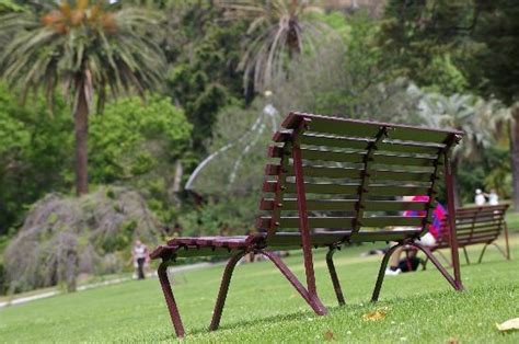 park benches melbourne park bench picture of royal botanic gardens melbourne