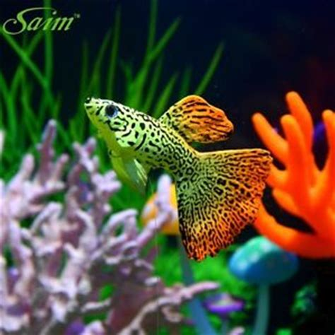Guppies Fish Tank Decorations by Aquarium Artificial Guppies Fish Float Simuliated For