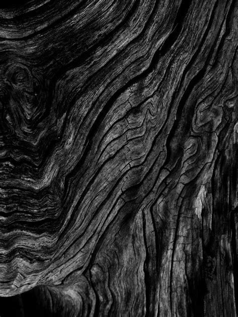 black and wood best 25 black wood texture ideas on