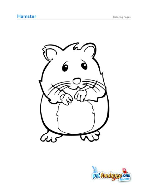 Coloring Page Hamster by Hamster Coloring Page Osob Coloring Pages