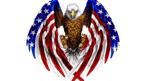 bald eagle  color  american flag red blue  white