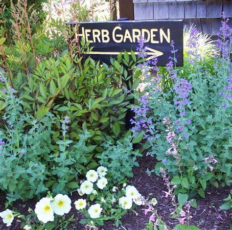 planting an herb garden planting an herb garden three green thumbs