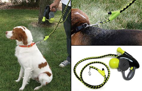 cool leashes cool doggie misting leash the green