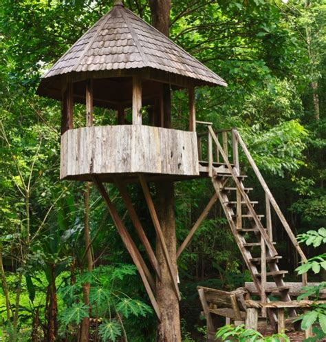 playhouses  huts   trees