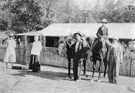 Bohemia Park Cottage Grove by Dorena Historical Society 187 Bohemia Mining District