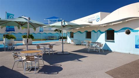 cheap hotel rooms clearwater florida clearwater hotels view 823 cheap hotel deals travelocity