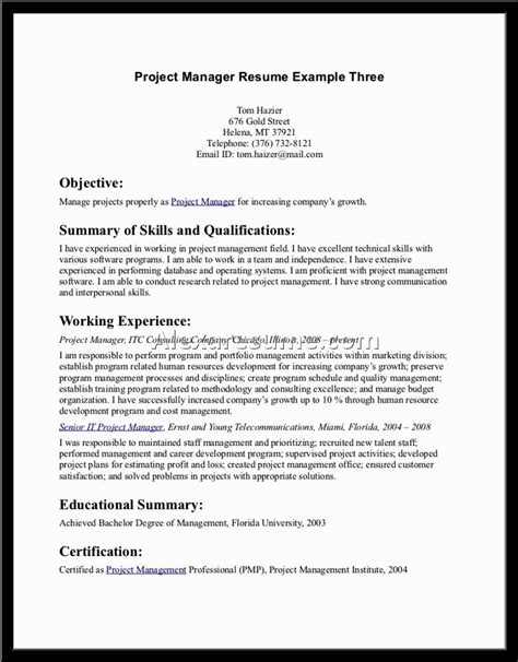 great resume objective statement document