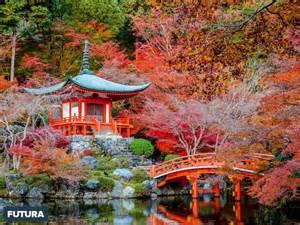 fond d 233 cran f 233 erique jardin japonais