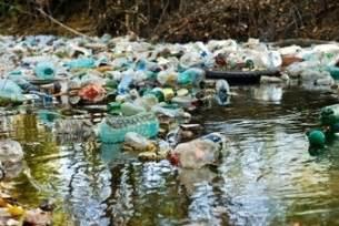 Diseases Caused By Viruses In Plants - water pollution sources and causes of water pollution biology tutorvista com
