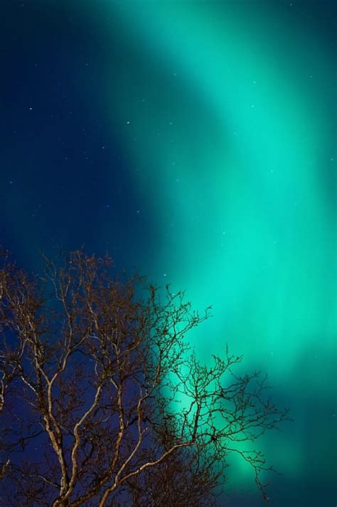 What Are The Southern Lights Called by Best Photos Of 2007 Page 6 Xossip
