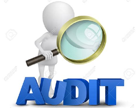 health care entities september 2017 aicpa audit and accounting guide books bulawayo council books last audited in 2012 the chronicle