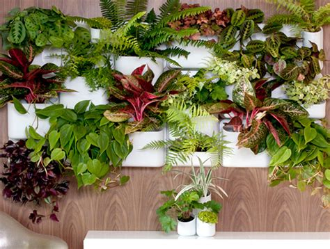 Urbio Wall Planter by Transform Walls To Indoor Gardens With Versatile Urbio