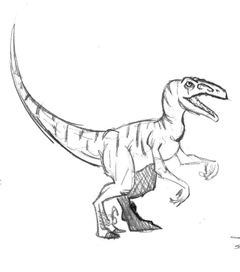 Velociraptor Page Coloring Pages Velociraptor Coloring Page