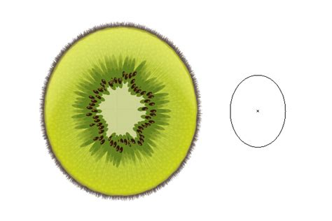 tutorial illustrator fruit create a sliced kiwi fruit with only one shape in adobe