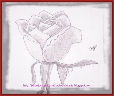 imagenes de rosas dibujadas con lapiz dibujos de rosas hechos a lapiz archivos imagenes de rosa