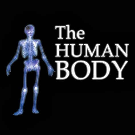 the human body english pre primary education blog for english foreign learners my body and my senses