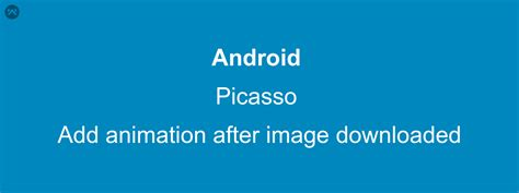 android use picasso to load image into programmatically add animation on imageview after image loaded from url