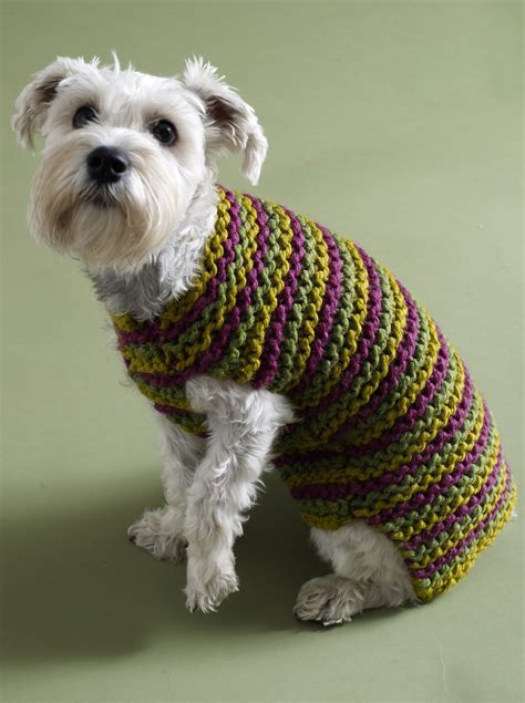 crochet pattern dog jumper keep your dog warm with a crochet dog sweater crochet