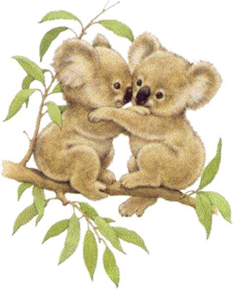 Imagenes Animadas Koala | koala animated images gifs pictures animations 100