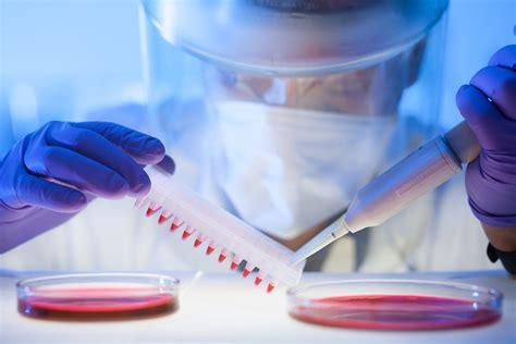 alimentazione tumore pancreas cancro al pancreas pi 249 a rischio chi vive nel nord italia
