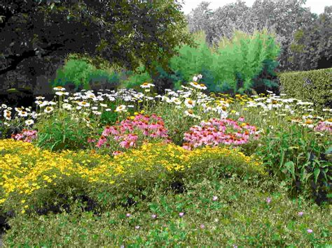 Garden Design The Best Way To Have The Benefit Of Cottage Flowers For A Cottage Garden