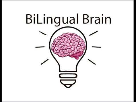como se dice themes en espanol 191 c 243 mo se dice traductor de espa 241 ol a ingl 233 s learn