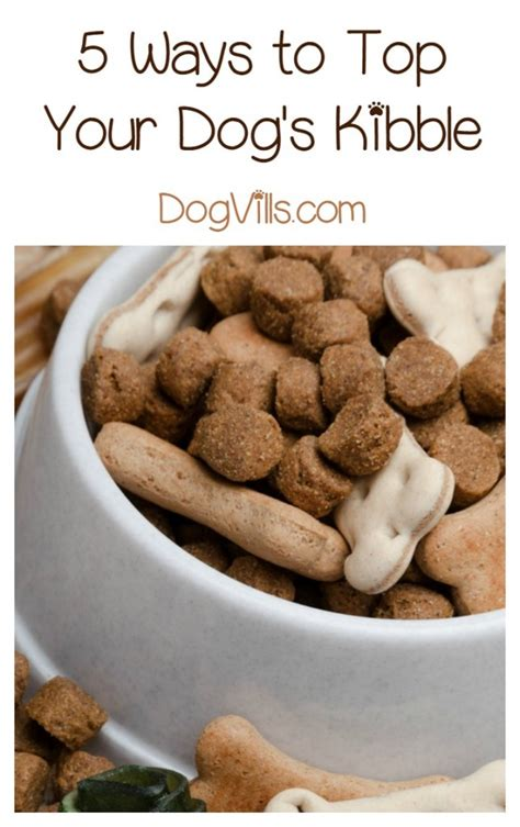 best puppy kibble what are the best kibble toppers