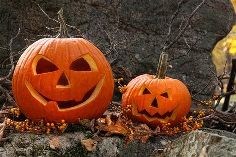 Halloween Gartendeko
