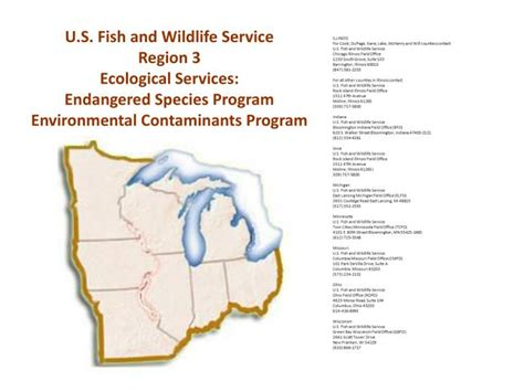 endangered species act section 9 ppt facilitated by jim mitchell usepa region 5 mike