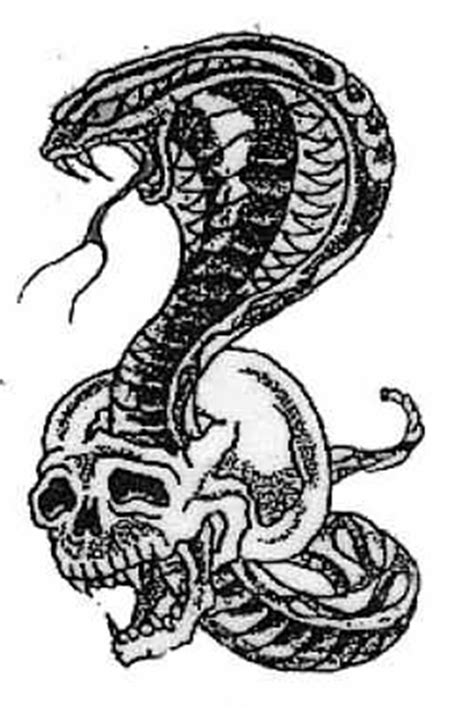 snake and skull tattoo designs snake images designs