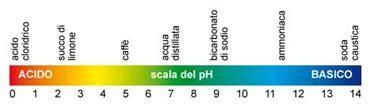 acidit 224 di stomaco cosa il segreto della salute l equilibrio tra acidit 224 e alcalinit 224