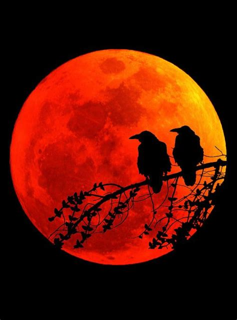 red moon tattoo 10 best ideas about blood moon on orange moon