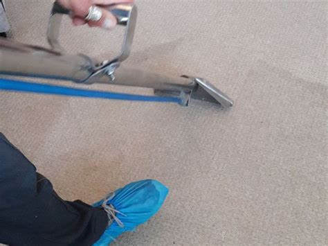 upholstery cleaning nottingham carpet upholstery cleaners nottingham