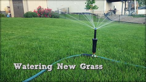 watering lawn in fall interior design ideas