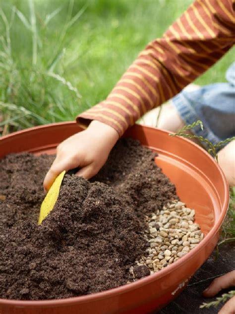 Sendok Agar Plastik Bening Isi 100pc 6 langkah mudah menanam kaktus di pot mungil rumah dan