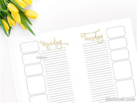 a5 printable organization set daily planner to do list a5 printable organization set daily planner to do list